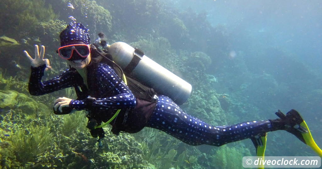 Snorkeling Tips for Your Next Summer Holiday  Blog SCUBA Diving