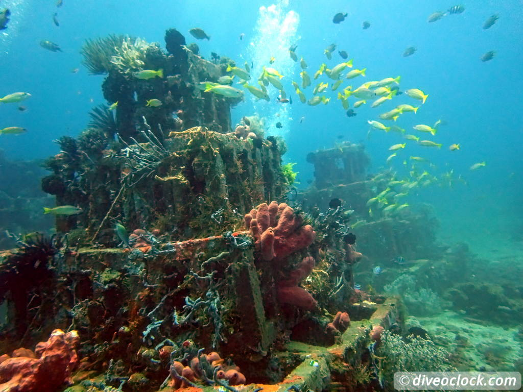 Amed One Of Bali S Best Dive Destinations Indonesia Dive O Clock