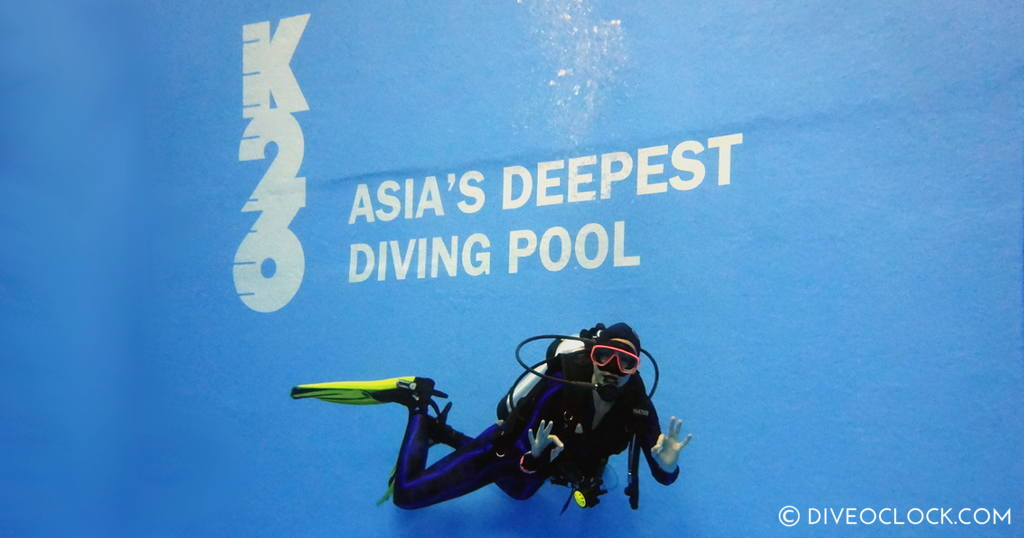 Holland SCUBA Diving Tips For Relaxed Shore Diving in Zeeland  Asia South Korea K26