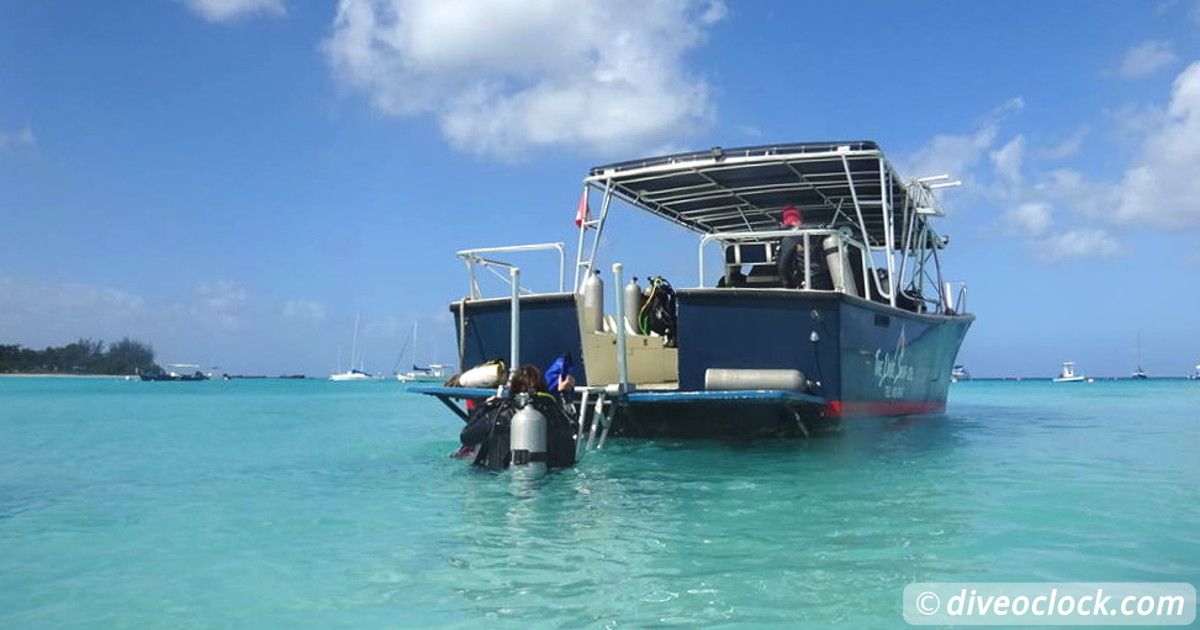 Punta Rucia Cayo Arena and Stunning Unexplored Dive Sites Dominican Republic   Caribbean Barbados Gspot