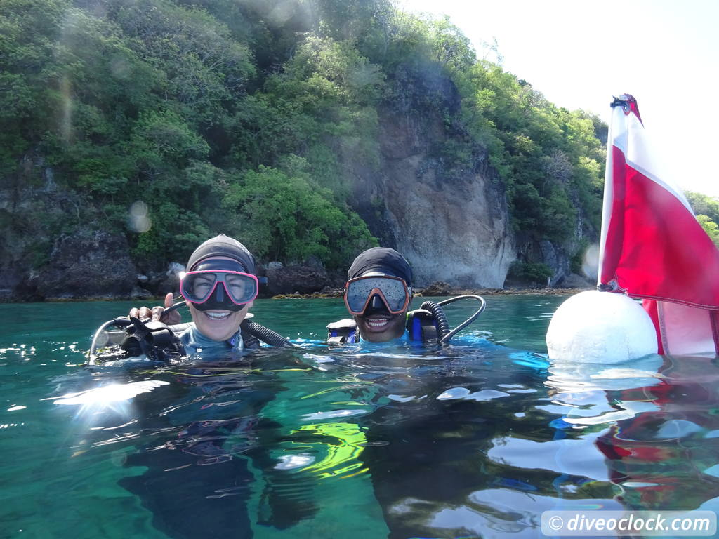 dominica diving in volcanic bubbles at champagne reef dive o clock