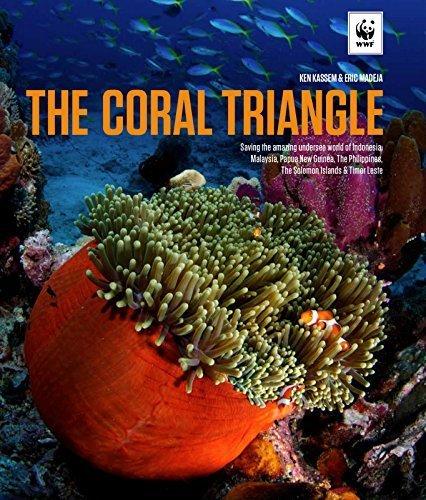 SCUBA QUIZ: Coral Triangle!