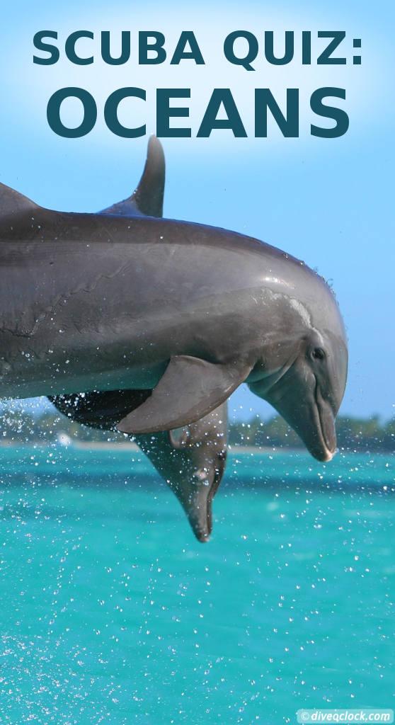 SCUBA QUIZ: Do You Know Every Ocean? - Dive O'Clock!